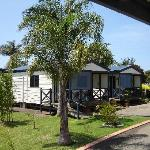 Foto de Colonial Palms Motel &