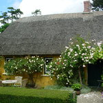 The rear of the cottage