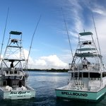 Capt. Jay's Deep Sea Fishing Miami
