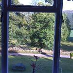 view out bedroom window