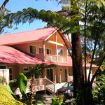 Volcano Forest Inn