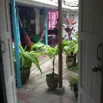 Foto de Luna International Hostel