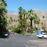 Foto di Motel 6 Palm Springs East