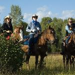  Pristine horseback riding and a large variety of riding terrain
