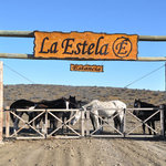 Estancia La Estela
