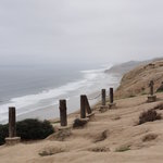 Coastal San Diego Tours to La Jolla & Torrey Pines with TourGuideTim