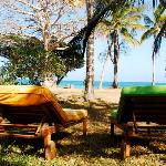  Sun loungers infron of the cottages