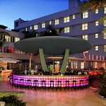 Clevelander Hotel