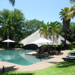 ‪Sefapane Lodge and Safaris‬