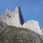 Can de la Huasteca