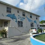 Photo de Dolphin Inn Guesthouse & Blue Dolphin Apts.