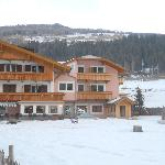 Photo de Hotel Waldheim