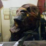 Mummified head.