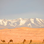 Atlas mountains in the background...
