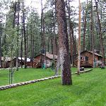 Forest Home Cabins Foto