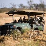 Game Viewing - Selinda Camp, Botswana