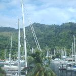 Crews Inn Hotel & Yachting Centre resmi