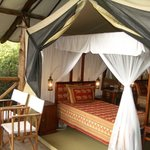 Fig Tree Camp