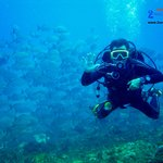 2 Oceans Divers, PADI Dive Resort