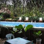 Guava Grove Bamboo Lounge & Pool Area