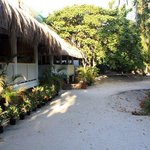 Mike & Diose's Beach Cottage Foto