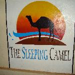 The Sleeping Camel Foto