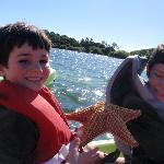 A starfish--don't see too many in Kansas!