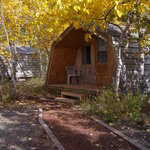 Kluane Bed & Breakfast