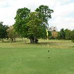  Golf Course 6