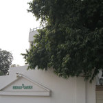  Emerald Garden Club Ltd.