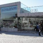 Entrance to the Aquarium and Museum.