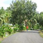 Rose Valley Port Blair Island Retreatの写真