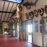 Museu do Tubarao - The restaurant's museum space