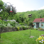 Hawk and Ivy B&B Retreat의 사진