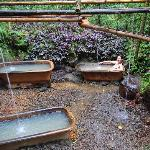 Ti Kwen Glo Cho hot springs