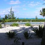 Window view from Caicos Beach Condo