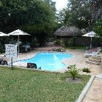 Pool at Maun Lodge