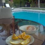 Breakfast Picked off the Trees around Pool