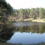  Fishing Pond at entrance