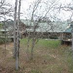 Φωτογραφία: Pine Creek Country Inn