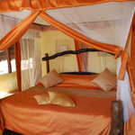 Foto de Kikoti Safari Camp