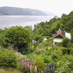 Abriachan Nurseries - The Garden On Loch Ness