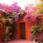 Photo de Hostal Casa del Sol Oaxaca
