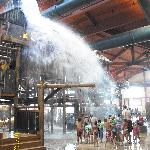 Bild från Great Wolf Lodge