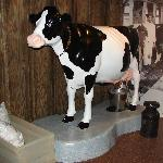  &quot;Milkie&quot; our life-size fiberglas cow!