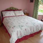 Double Room Hollow Stream B&B Kingscourt