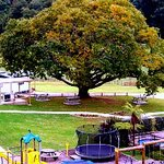 ‪Waitomo Top 10 Holiday Park‬