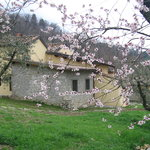 Agriturismo il Ponticello