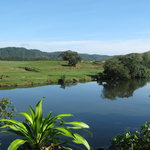 Daintree Riverview Lodges &amp; Camp Ground