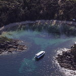 Dolphin Wild Cruises - Jervis Bay